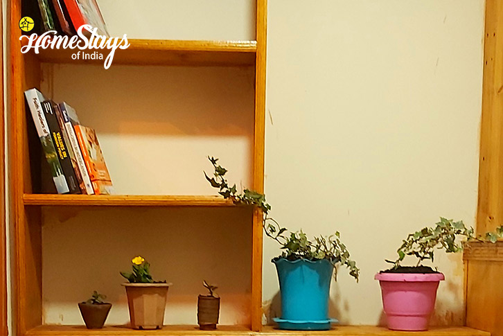 Book Shelf-Lachung Boutique Homestay