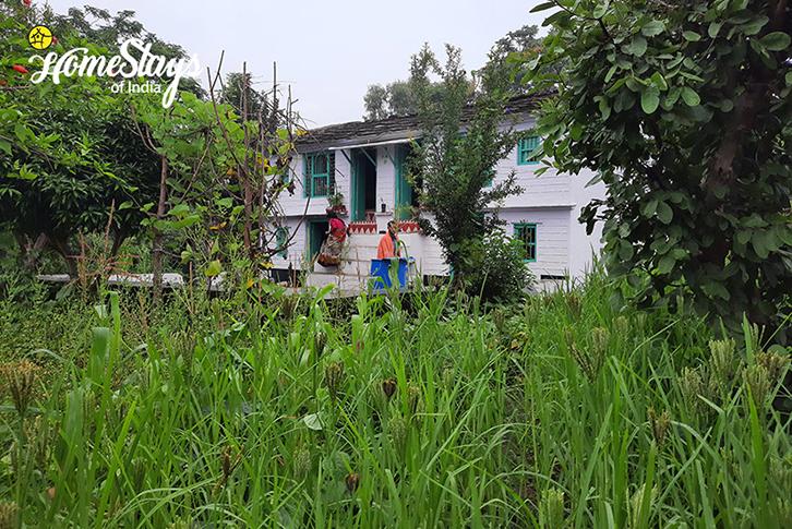 Farming-Mirai-Homestay-Dwarahat