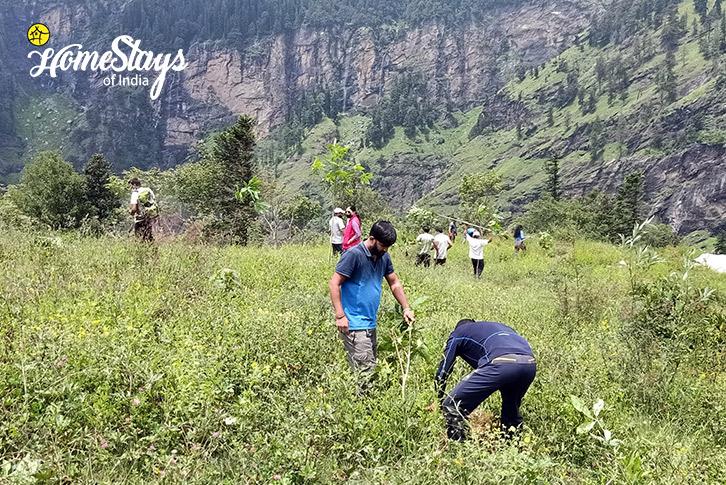 Farming-Vashisht Homestay-Manali