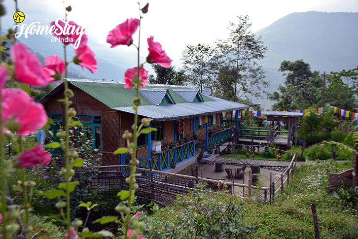 Lagay Village Homestay-2-Pelling