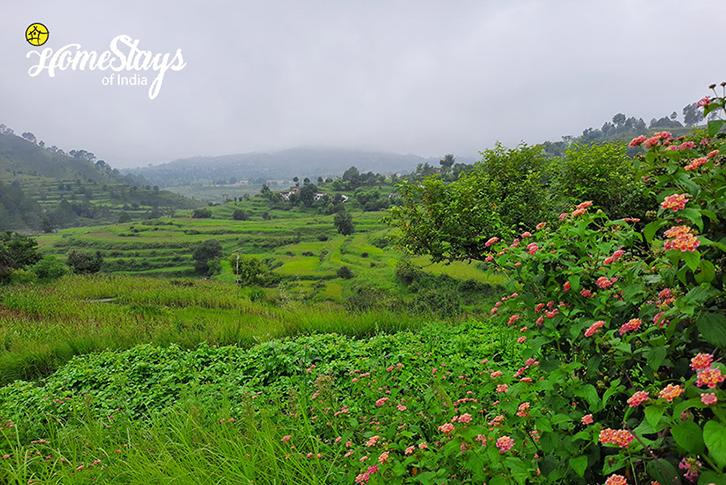 Landscape-Mirai-Homestay-Dwarahat