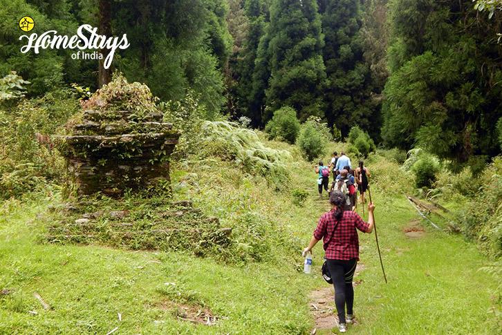 Picnic-Lagay Village Homestay-Pelling