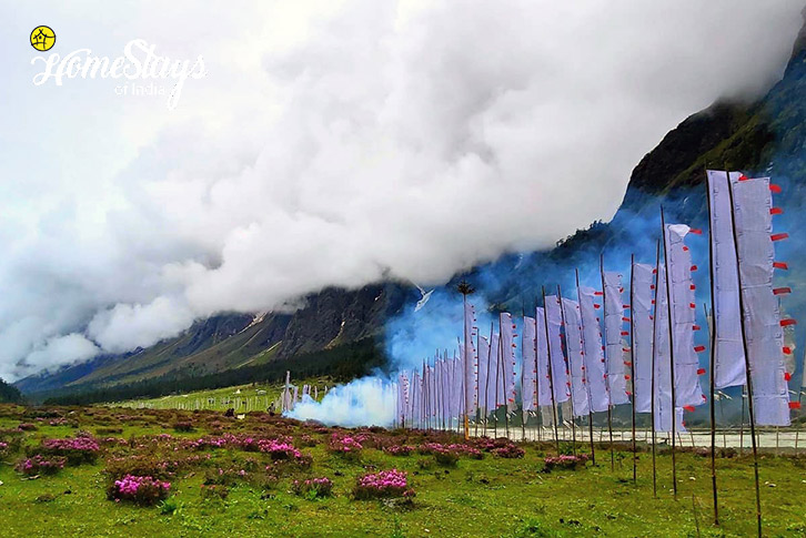 Surrounding-Lachung Boutique Homestay