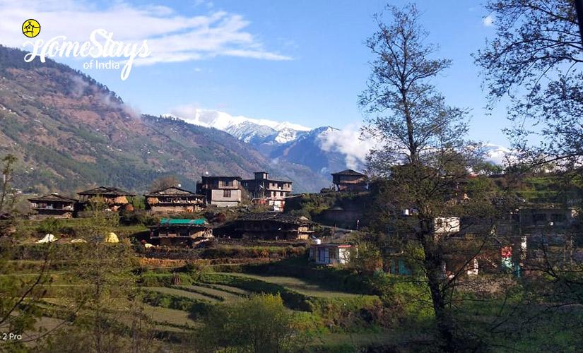 The-Village-3_Kais-Village-Homestay-Kullu