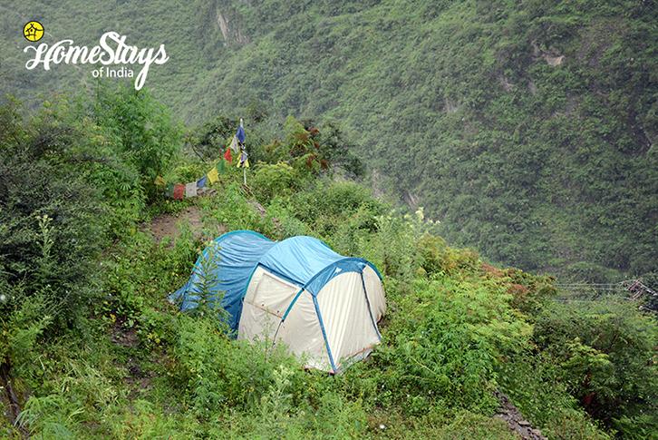 Camping_Malana-Homestay