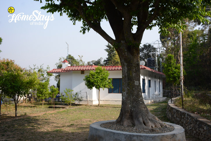 Garden-Jone's Estate Homestay-Bhimtal