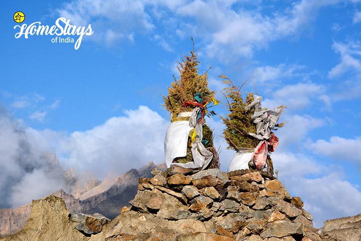 Holy-Tree_Mulbekh-Homestay-Kargil
