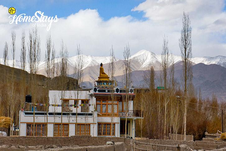 Stok Monastery-Stok Eco Village Homestay-Leh