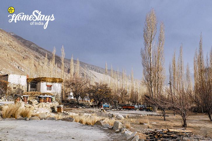 Village-2-Sumur-Homestay-Nubra Valley-Ladakh