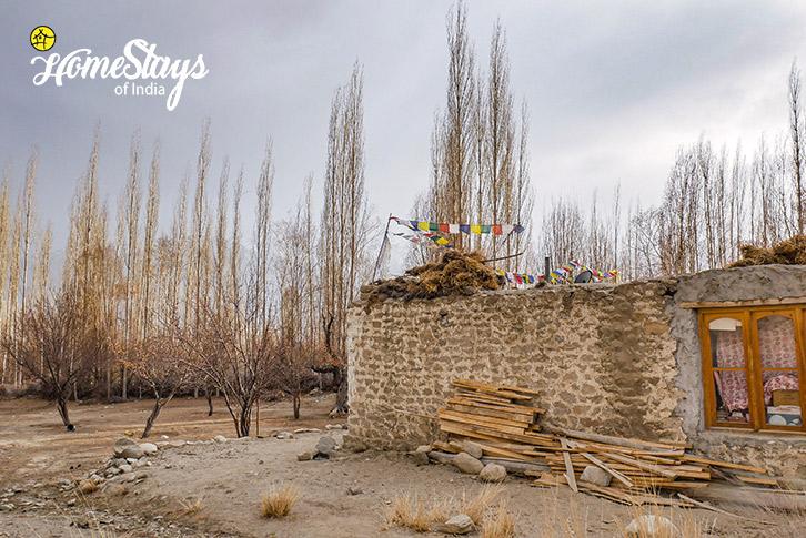 Village-Sumur-Homestay-Nubra Valley-Ladakh