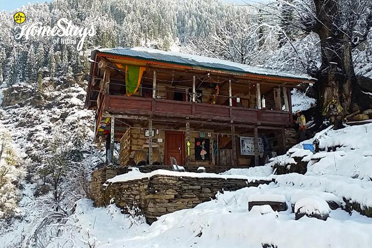 Winter-2_Malana-Homestay