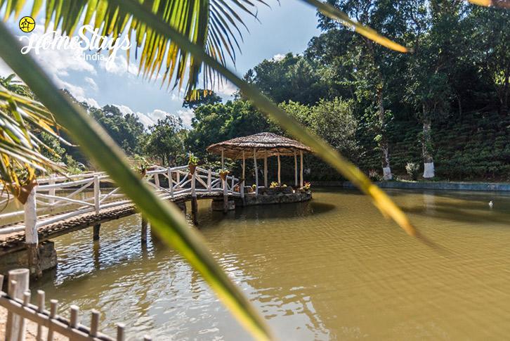 Pond-1-Umsaw Nongkharai Homestay-Ri Bhoi