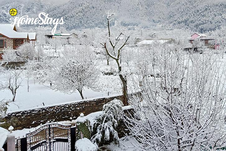 Winter6_Haripur-Homestay-Manali