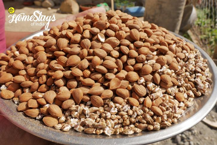 Dry Fruit_Skurbuchan Homestay-Ladakh