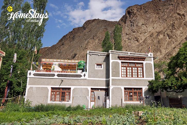 Skurbuchan Homestay-Ladakh