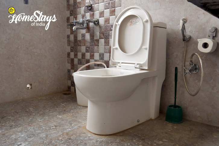 Bathroom-Chubi Homestay-Leh