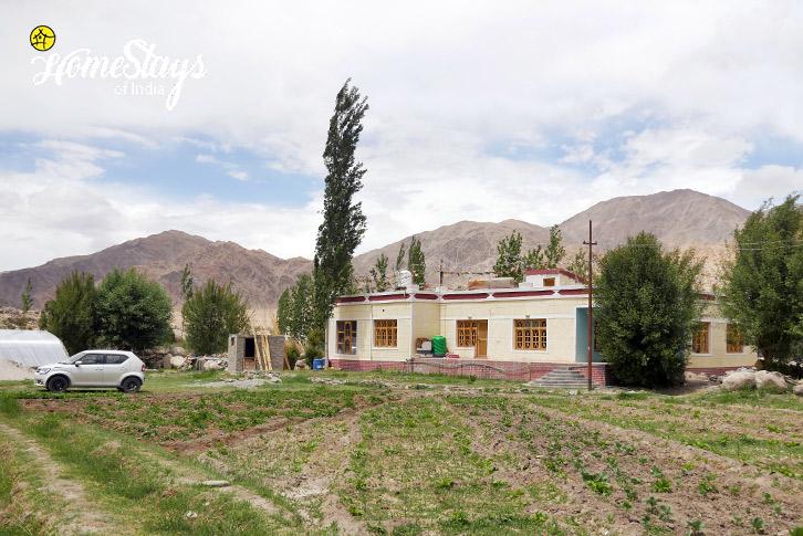Farming-Upshi Riverside Homestay