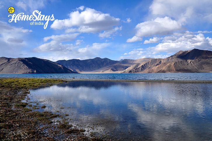 Pangong LakeMerak Homestay-Pangong