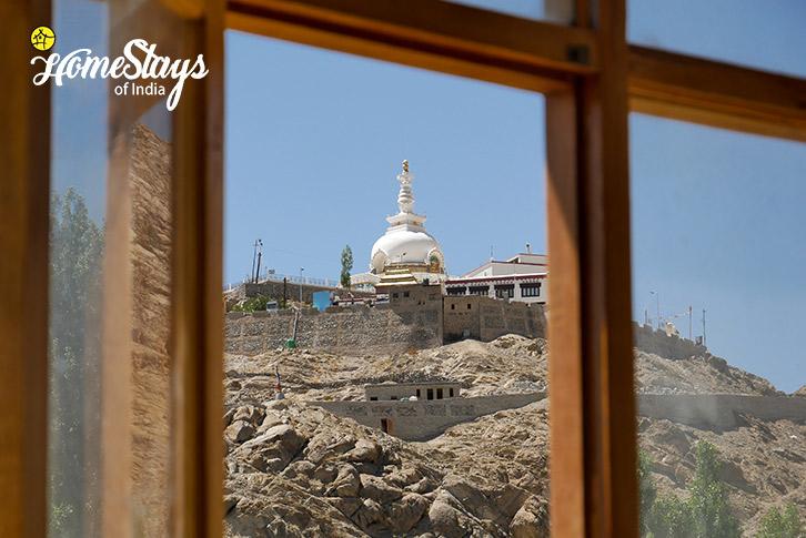 Room Window-Upper-Changspa-Homestay-Leh