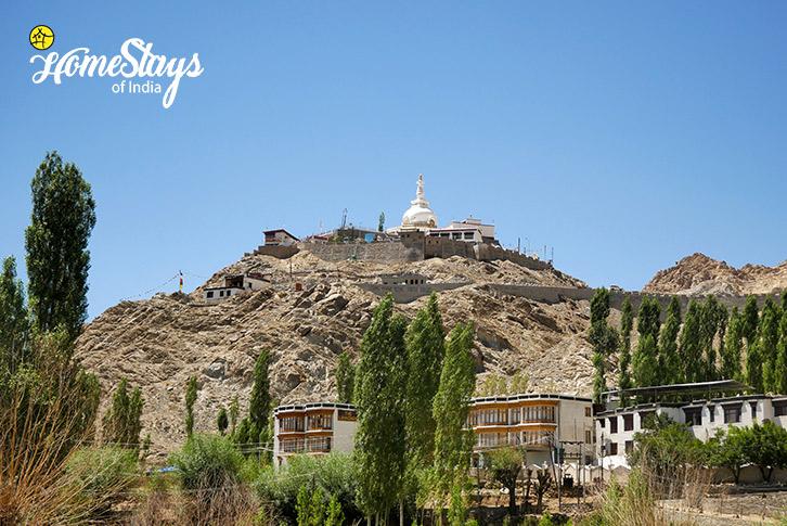 Shanti-Gompa-Upper-Changspa-Homestay-Leh