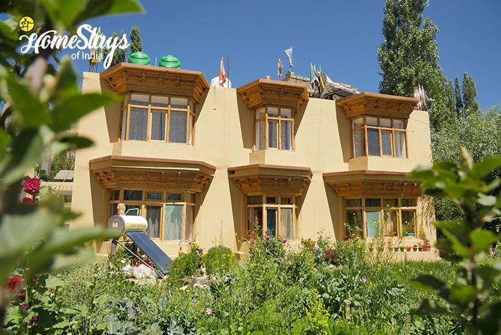 Upper-Changspa-Homestay-Leh
